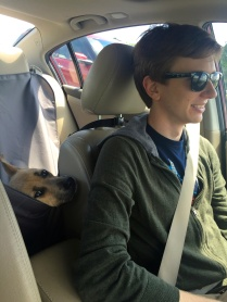 """""""Are we there yet??"""""""